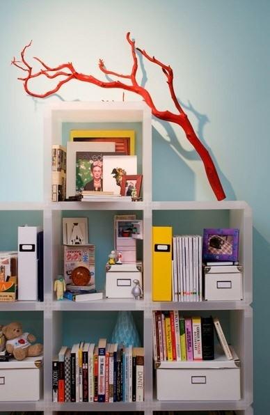 branchonbookcase